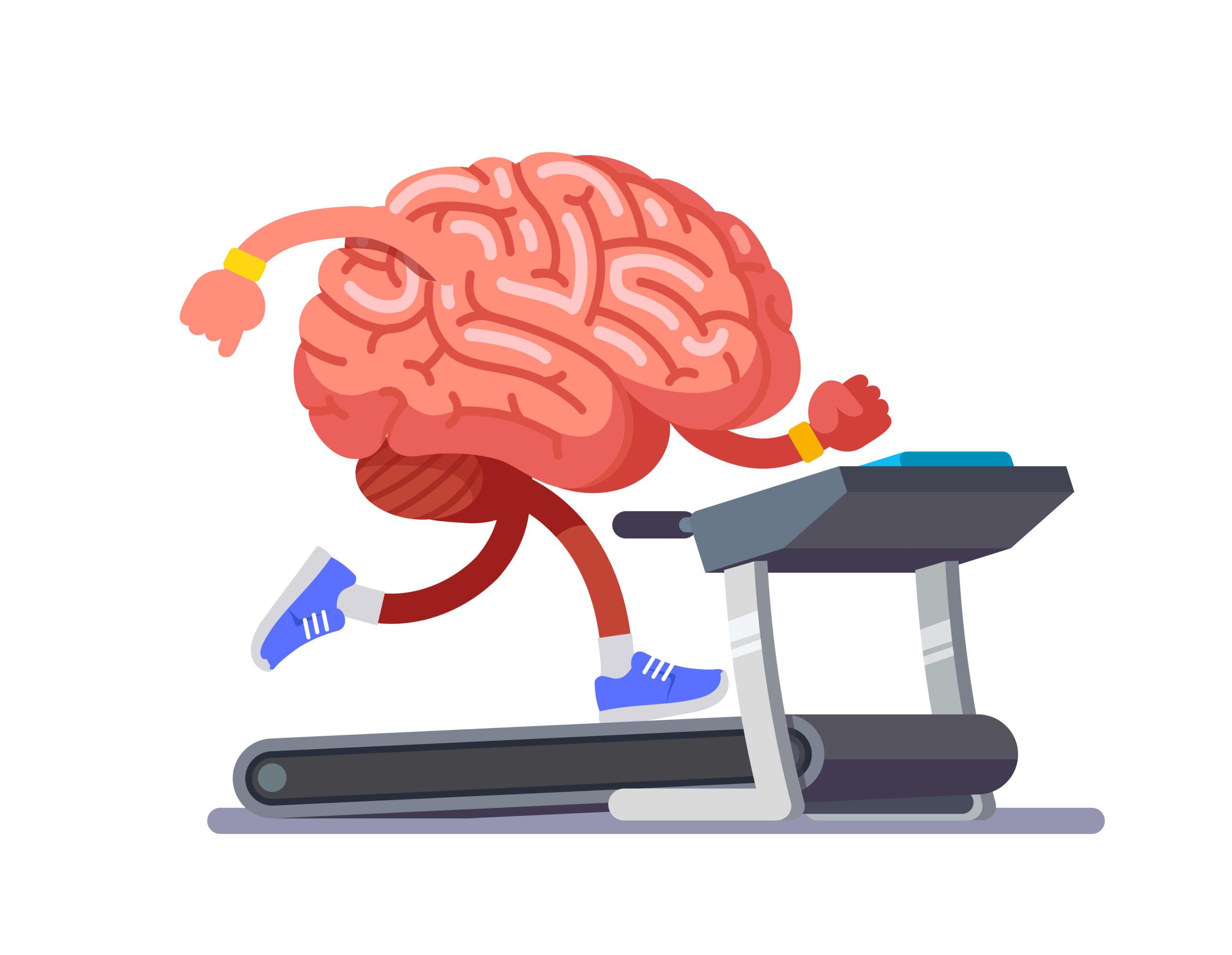 運動と脳の働きには良い相乗効果